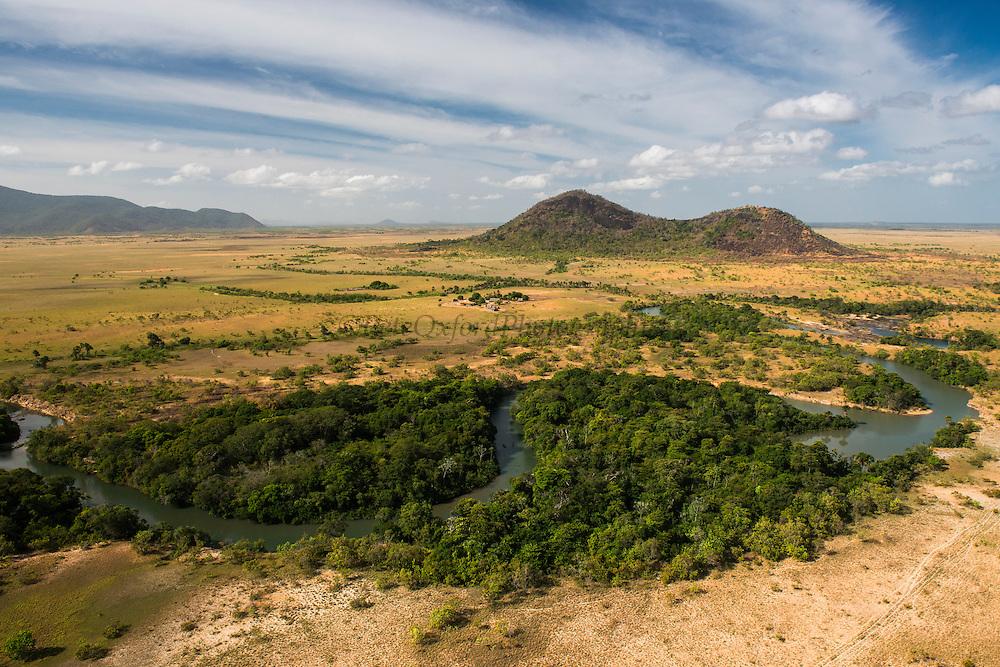 Saddle Mountain Ranch<br /> Savanna <br /> Rurununi<br /> GUYANA<br /> South America,<br /> cattle