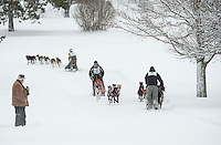Fran Plaisted of Orford, Chris Carter of Penacook and Peter Colbath of Wolfboro pass through Laconia Country Club during the six dog class series of the 84th Annual Laconia World Championship Sled Dog Derby Friday morning.   (Karen Bobotas/for the Laconia Daily Sun)