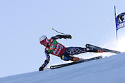 SOELDEN AUSTRIA OCT 26, Ted Ligety USA  competing in the mens giant slalom race at the Rettenbach Glacier Soelden Austria, the opening race of the 2008/09 Audi FIS Alpine Ski World Cup