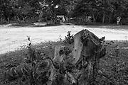 Os Veredeiros habitam os territ&oacute;rios ao longo dos cursos d&rsquo;&aacute;gua de forma dispersa. Existe, por&eacute;m, uma certa organiza&ccedil;&atilde;o e um padr&atilde;o de ocupa&ccedil;&atilde;o espacial que se constitui por unidades de agrupamento ou grupos rurais de vizinhan&ccedil;a, ligados pelo sentimento de localidade, por la&ccedil;os de parentesco, pelo trabalho e manejo da terra, por trocas e rela&ccedil;&otilde;es rec&iacute;procas. Geralmente, os nomes das localidades veredeiras s&atilde;o os mesmos dos rios que passam pelas comunidades. Nem sempre det&ecirc;m a posse da terra, sendo camponeses muitas vezes arrendat&aacute;rios. Os veredeiros entendem o trabalho como o legitimador da posse da terra, mas n&atilde;o de uma posse privada (j&aacute; que boa parte dessas terras &eacute; de uso comum). <br />  A categoria &ldquo;veredas&rdquo; frequentemente &eacute; referida a &aacute;reas &uacute;midas, de terreno argiloso e sob dom&iacute;nio de palmeiras como o buriti. Se comparada a outros A identidade veredeira est&aacute; ligada ao territ&oacute;rio, na forma de cria&ccedil;&atilde;o, plantio e extra&ccedil;&atilde;o de itens diversos e na rela&ccedil;&atilde;o equilibrada estabelecida com o ecossistema das Veredas, Cerrado e Caatinga. Os veredeiros vivem pr&oacute;ximos dos cursos d&rsquo;&aacute;gua, &aacute;reas inund&aacute;veis e das chapadas, de onde extraem, principalmente do buriti, subs&iacute;dios imprescind&iacute;veis &agrave; constitui&ccedil;&atilde;o de suas vidas.<br />  &ldquo;Os veredeiros caracterizam-se por um sistema de produ&ccedil;&atilde;o agroextrativista, com plantio rotativo no campo &uacute;mido de envolt&oacute;rio da vereda, agroextrativismo e soltio de gado. Nas &eacute;pocas de chuva, deixam o gado se movimentar livremente pelas chapadas, enquanto na &eacute;poca de seca, aproveitam os campos ainda &uacute;midos do envolt&oacute;rio da vereda. Suas casas tradicionalmente se assentam pr&oacute;ximas &agrave; vere