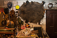 Wild boar (Sus scrofa) hide and other trophies in the garage of a Romanian hunter. Mehadia, Caras Severin, Romania.