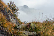Bergweg entlang der Grimselsee