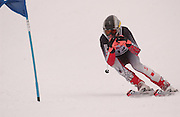 Third overall in the boys giant slalom individual competition, Chris Larson of Iron Mountain makes his first of two giant slalom runs at Boyne Highlands Resort in Harbor Springs at the Division 2 State Ski Finals.