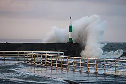 © Licensed to London News Pictures. 17/10/2017. Aberystwyth, Wales, UK. At first light on the morning after the onslaught of ex-Hurricane Ophelia , huge waves crash into the promenade and sea defences in Aberystwyth on the Cardigan Bay coast of west Wales .Photo credit: Keith Morris/LNP