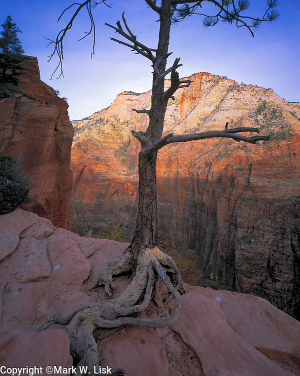 Angels Landing, Zion National Park, Utah.