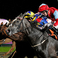 Silver Lace and Ted Durcan winning the 8.15 race