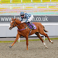 Kempton 10th April 2013