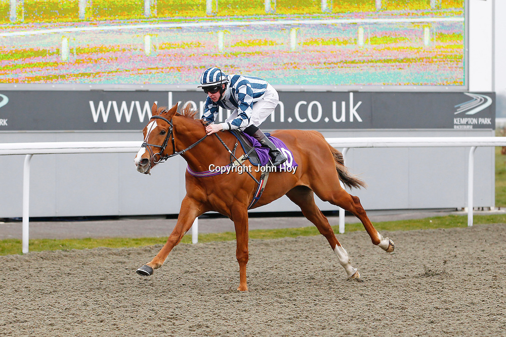 Stag Hill and Joey Haynes winning the 5.30 race