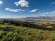 Summer view of the Lost River Range and Idahos highest peak Mount Borah at 12662 feet or 3859 meters in Central Idaho near the town of Mackay