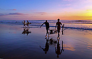 Two lifeguards pulling lobster traps from ocean at Sunet at Del Mar State Beach in Del Mar, California, USA, North America