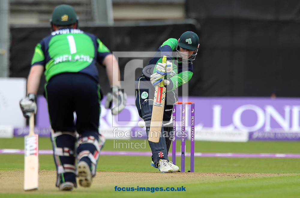 William Porterfield bats for Ireland during the One Day International match at the Village, Malahide<br /> Picture by Lorraine O'Sullivan/Focus Images Ltd +353 872341584<br /> 08/05/2015