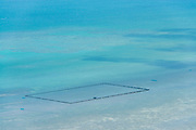 Fish traps and details from Mannar lagoon.