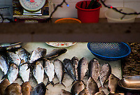 Still life looking down on a fish market in Singapore, Asia,