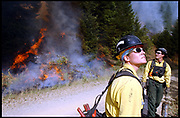 "Tiller, Oregon, USA, 05.08.2002; A wildfire is only 10 percent contained in the Tiller area of Oregon.  4,8 million acres have succumbed to the flames so far in the US in the  2002 season. Amanda (26) is a ""hot shot"", a wildfire firefighter who works at the frontline. Hotshots and smoke jumpers have the most dangerous jobs, trying to contain and control the fire by cutting or burning off fuel on the ground. They are in good physical condition and have to be able to take care of themselves in case they get trapped by the unpredictable fires."