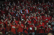 """Fans cheer at the C.M. """"Tad"""" Smith Coliseum in Oxford, Miss. on Tuesday, February 1, 2011. Ole Miss won 71-69 over Kentucky."""