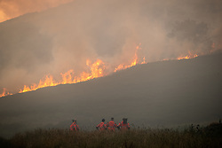 """© Licensed to London News Pictures . 27/06/2018 . Saddleworth , UK . Homes are evacuated and a Major Incident is declared as fire-fighters work to control large wildfires spreading across Saddleworth Moor and towards residential areas in surrounding towns . Very high temperatures , winds and dry peat are hampering efforts to contain the fire , described as """" unprecedented """" by police and reported to be the largest in living memory . Photo credit : Joel Goodman/LNP"""