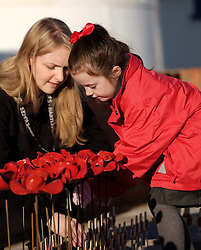 © Licensed to London News Pictures. <br /> 16/12/2014. <br /> <br /> Hartlepool, United Kingdom<br /> <br /> Pupils from St Aidan's Primary School plant 130 ceramic poppies previously on display at the Tower of London to mark those killed during an event to commemorate the bombardment of Hartlepool by German warships during World War One. During the bombardment 130 civilians were killed and more than 500 were wounded. The Headland's Heugh Gun Battery returned fire in what was the only battle to be fought on British soil during World War One, and one of the Battery's soldiers, Theo Jones of the Durham Light Infantry, became the first British soldier to be killed by enemy action on home ground in the war.<br /> <br /> Photo credit : Ian Forsyth/LNP