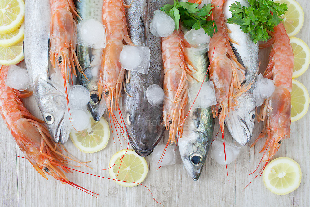 Assortment of fresh fish on ice: mackerel, codfish and prawns.