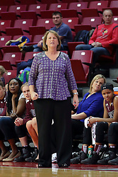 29 January 2017: Cindy Stein during an College Missouri Valley Conference Women's Basketball game between Illinois State University Redbirds the Salukis of Southern Illinois at Redbird Arena in Normal Illinois.
