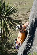 graeme clarke - lycra bandit 19 hanging rock