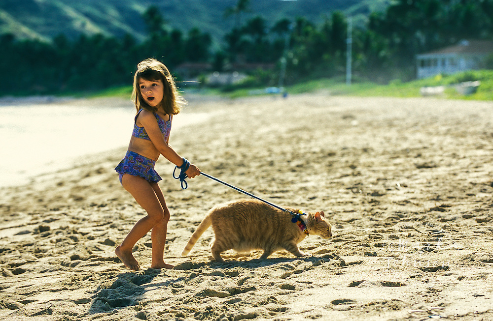 3 year old girl walking cat on beach