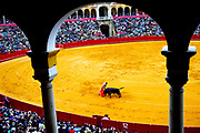 "Matador Jose Maria Manzanares performs the ""estocada"" or final thrust of the sword to kill a bull in a fight. A proper estocada will give the bull a relatively quick death, with a stab between the shoulder blades through the heart."