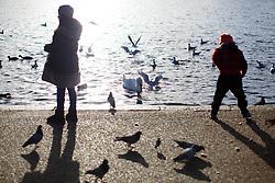 © licensed to London News Pictures. London, UK 02/01/2014. People enjoying the sunshine in Hyde Park, London on Thursday, January 2, 2014. Photo credit: Tolga Akmen/LNP