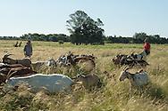 """A cultivar..."""" nuclea productos elaborados por cooperativas, emprendedores, emprendimientos familiares, sin pesticidas ni agrotóxicos: agroecología + consumo responsable + prácticas ecológicas y saludables."""