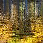 """Striking Gold"" <br />
