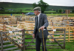 © Licensed to London News Pictures. <br /> 13/08/2014. <br /> <br /> Danby, North Yorkshire, United Kingdom<br /> <br /> A steward checks the sheep pens at the start of the Danby Agricultural Show in North Yorkshire. <br /> <br /> This year is the 154th show which was founded in 1848. It is the oldest agricultural show in the area and offers sheep dog trials, judging of a variety of different animals such as cattle, sheep, ferrets, horses and rabbits along with different classes of horticulture and dairy. <br /> <br /> Photo credit : Ian Forsyth/LNP