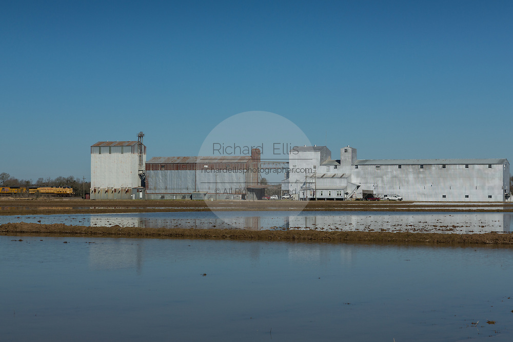 Grain silos used to store rice on the edge of rice paddies in rural Elton, Louisiana.