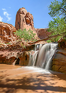 Coyote Gulch in Grand Staircase-Escalante National Monument.