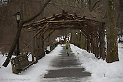 Central Park at winter time, New York