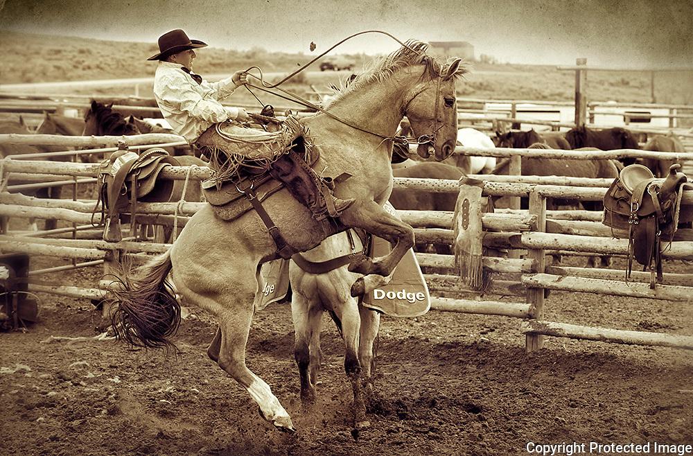 Riding a Bucking Horse , Colorado