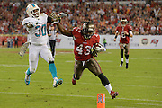 Tampa Bay Buccaneers running back Bobby Rainey (43) is forced out of bounds by Miami Dolphins strong safety Chris Clemons (30) during the Bucs 22-19 win at Raymond James Stadium on Nov. 11, 2013 in Tampa, Florida. <br /> <br /> &copy; 2013 Scott A. Miller