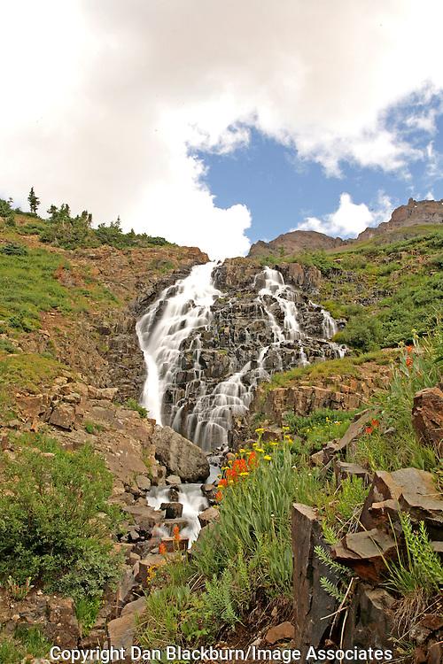 Wildflowers & Twin Falls Yankee Boy Basin San Juan Mountains Colorado