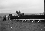 "Jameson Gold Cup At Punchestown.     (N72)..1981..29.04.1981..04.29.1981..29th April 1981. .The Jameson Gold Cup at Punchestown,Naas ,Co Kildare,was won today by ""Owens Image"" owned by Mrs Rosemary Garvey. The horse was ridden by Mr F Berry and was trained by Mr P Hughes. Mrs Betty Bohan,wife of Mr Eddie Bohan,Past President,Vitners Federation of Ireland,made the presentation of The Gold Cup after the race..Picture shows ""Owens Image"",ridden by Mr F Berry,clearing the last fence on the way to winning the Jameson Gold Cup."