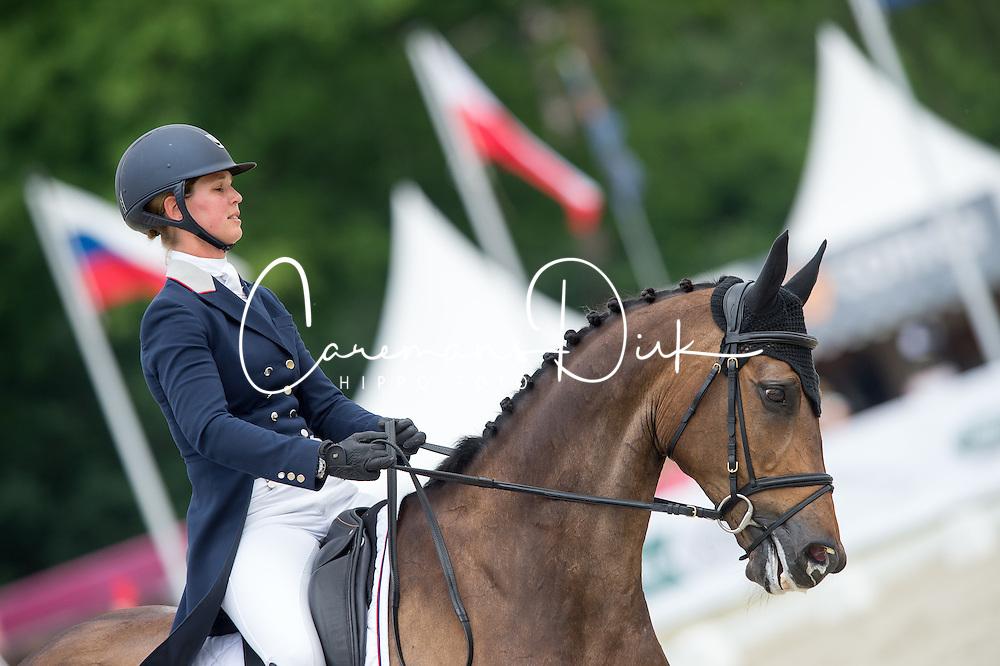 D Andrimont Stephanie, (BEL), Alexander   <br /> Dressage - CIC3* Luhmuhlen 2016<br /> © Hippo Foto - Jon Stroud<br /> 17/06/16