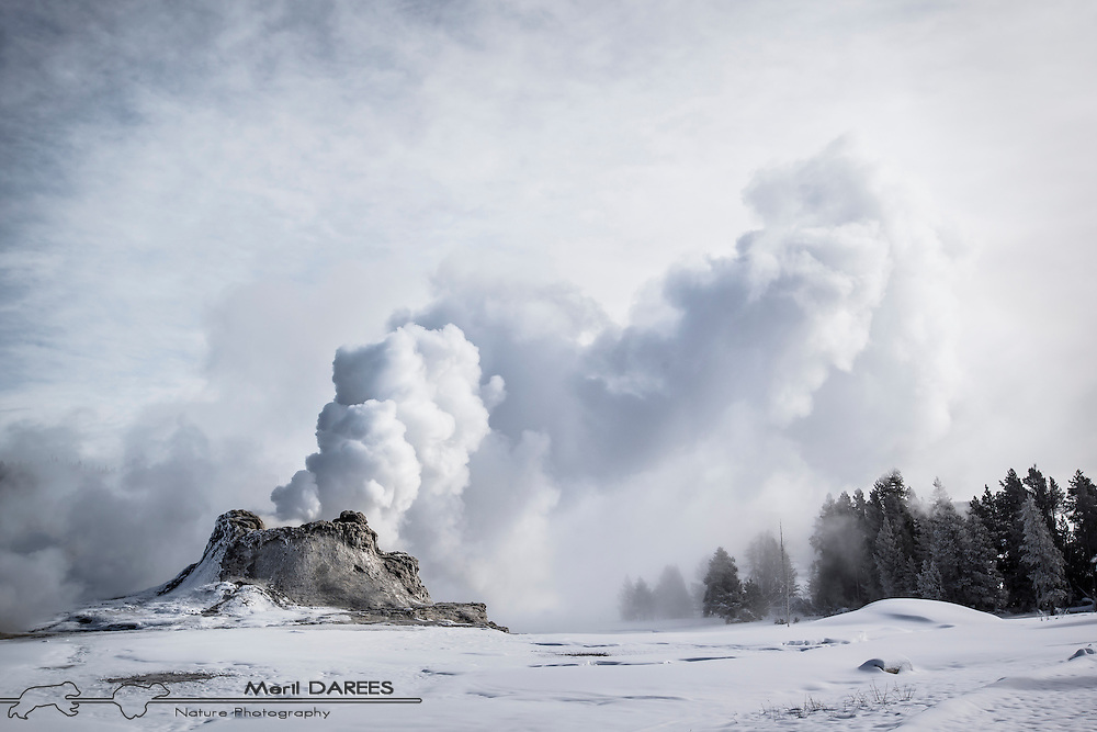 Castle geyser smoking in the snow. Yellowstone National Park. USA.