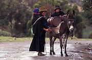 Indigenas going to market, near Riobamba, Chimborazo, Ecuador