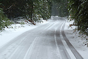 A snowy road winds through Rogue River National Forest, Oregon