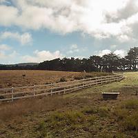 Casari Ranch 2015
