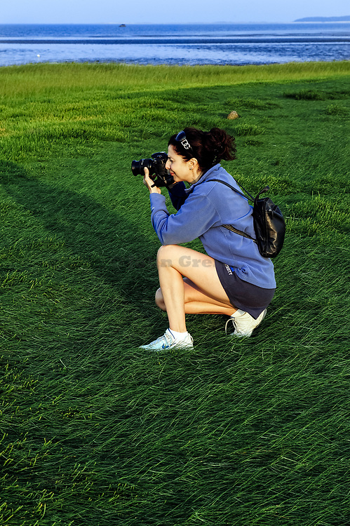 Woman landscape photographer  composes image from a beach dune during the early morning light, Cape Cod, MA
