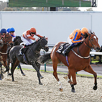 Multitask and Jamie Goldstein winning the 12.30 race