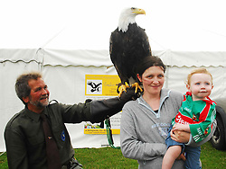 Lothar Muschketat with his bald eagle from the Irish Raptor research centre in Ballymote was a big attraction at the Tourmakeady Show ...Pic Conor McKeown