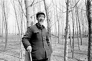 Sheep farmer with trees in field