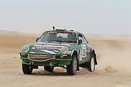 """Porsche 911 """"Wild African"""""""