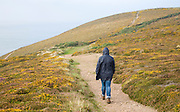 Woman wearing kagoule walking along the South West coast path at St Agnes head, Cornwall, England