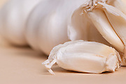 Allium sativum, garlic, bought in Japan.