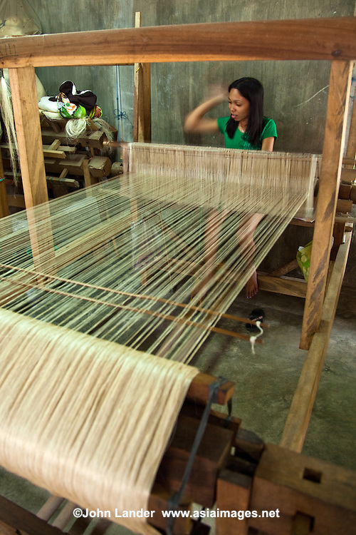 Abaca is a species of banana native to the Philippines.  Most abaca fibre is pulped and processed into specialty paper used in tea bags, vacuum bags, currency, carpets, clothing and furniture. Abaca rope is very durable, flexible and resistant to salt water damage, allowing its use in ship's lines and fishing nets[1